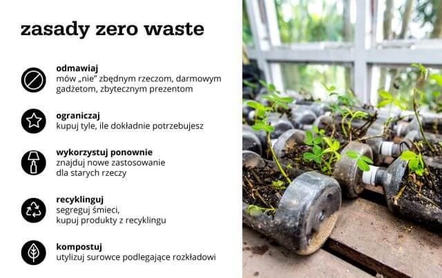 zasady zero waste - infografika