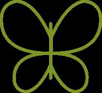 jedwab (ang. silk)